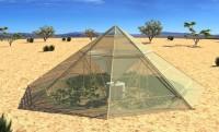 Dew Collector: новые инновационные теплицы, которые обеспечат и овощами, и водой