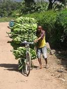BIO Бананы - 1 кг